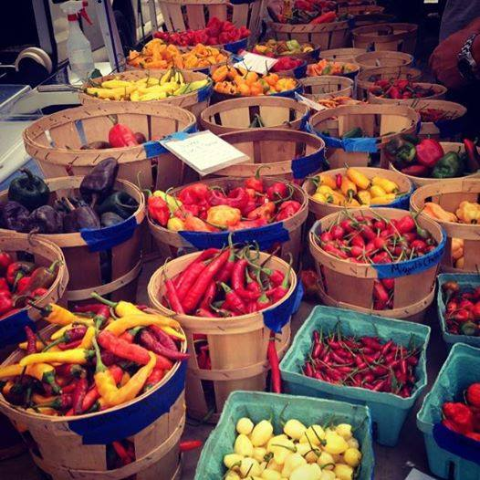 tessa nyc market peppers